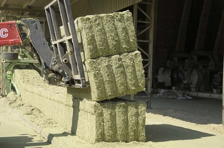 Dehidrated Bales